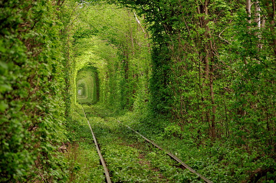 17. Tunnel of Love (Ukraine)