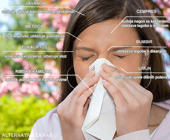alergija-infografika