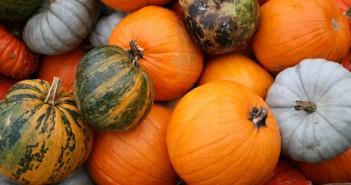Pumpkins-(1)