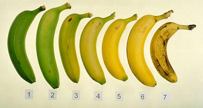Japansko istraživanje dokazalo da su OVAKVE banane najzdravije!