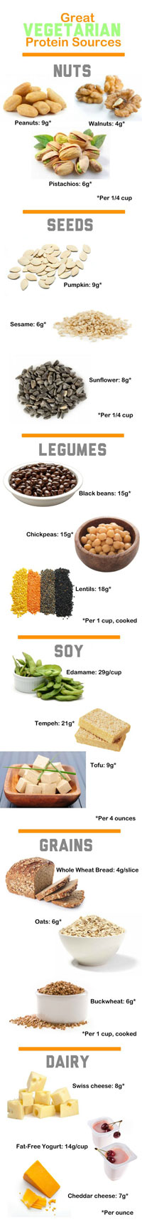 proteinsources