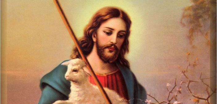 Čovjek koji nije razvio empatiju prema životinjama je nezreo u humanosti i vjeri