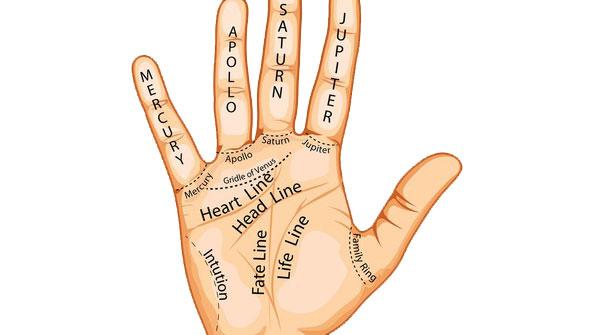 Što vam je zapisano na dlanu?