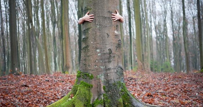 Nekada treba protresti stablo prijateljstva da padnu truli plodovi!