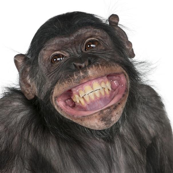 5-smile