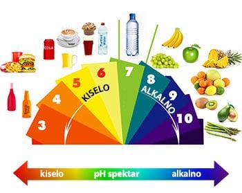 alkalna-prehrana-shema