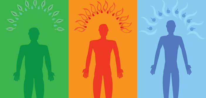 Vaš horoskopski znak i 3 psihofiziološke energije - Otkrijte što vas karakterizira!