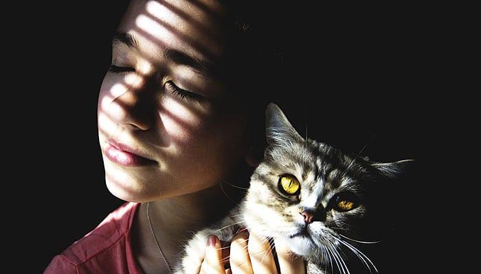 Nevjerojatne dobrobiti predenja mačke na ljudski organizam