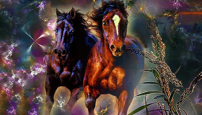 Riješite ovu zagonetku i dokažite inteligenciju: Dva konja za dva sina!