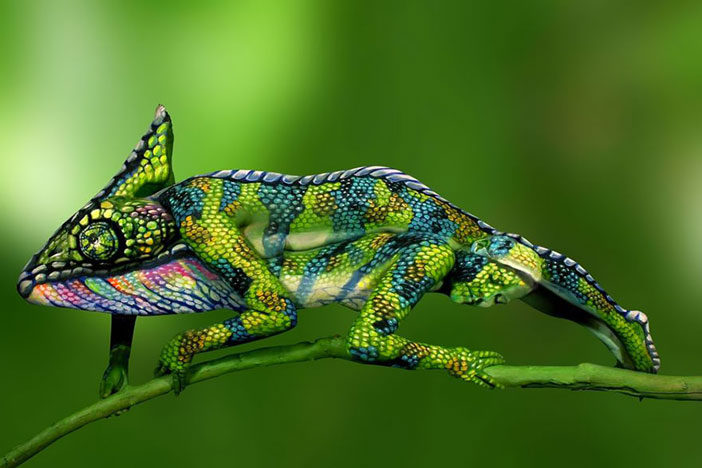 chameleon-body-painting-optical-illusion-johannes-stotter-1