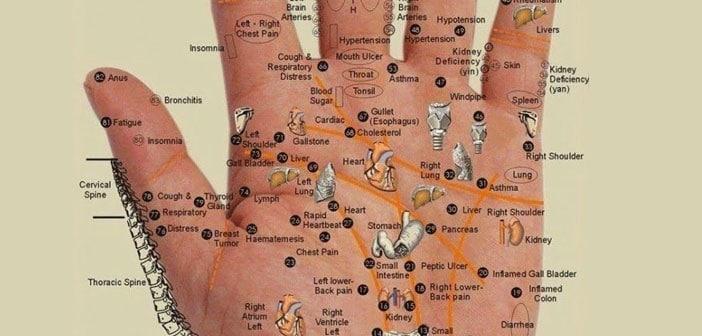 Mapa zdravlja je na dlanu vaše ruke!