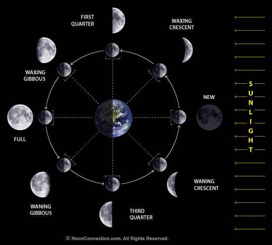 moon_phases_diagram-(1)