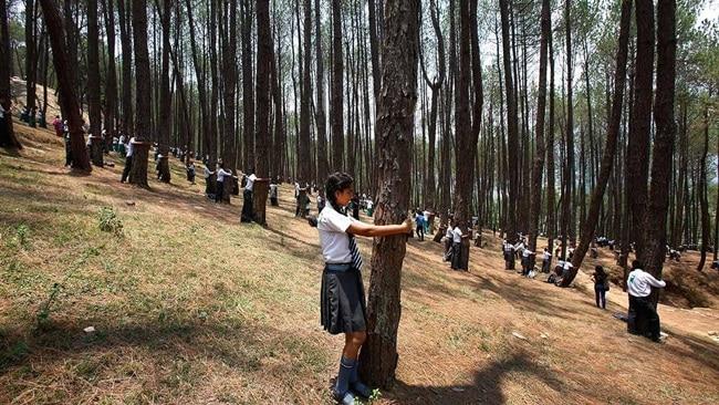 Foto: cdn.abclocal.go.com