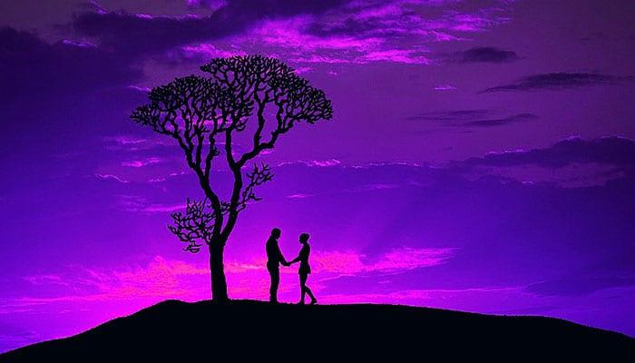 Trajna zaljubljenost - Prirodna ljubavna bit postojanja