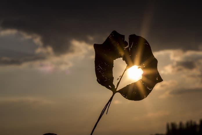 Zašto vam se srce slama iznova i iznova: Ovnova dobrota je neprepoznata, Vaga