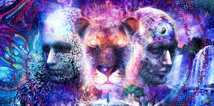 Reinkarnacija - Što određuje koje tijelo dobivamo?