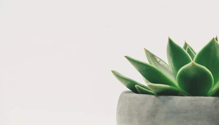 IZAZOV 30 minimalističkih dana - Probajte OVO, promijeniti će vam život!