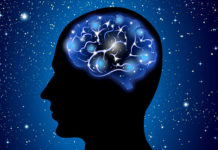 abstract brain 23 2147515203
