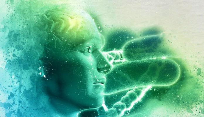 Dokle god živiš iz uma, uvijek ćeš iskušavati bolan život! Human-biology-background_1048-3137-696x398