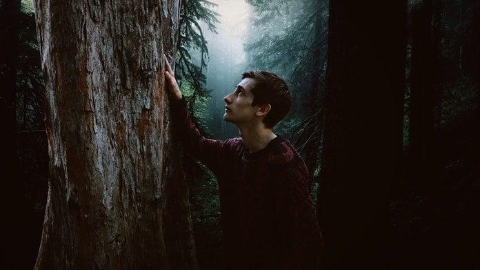 Stabla su nam prijatelji, ona nas iscjeljuju: Kako ostvariti spiritualnu konekciju s drvećem