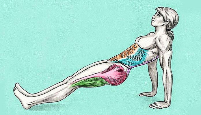kako sagorijevati masnoće u donjem dijelu tijela
