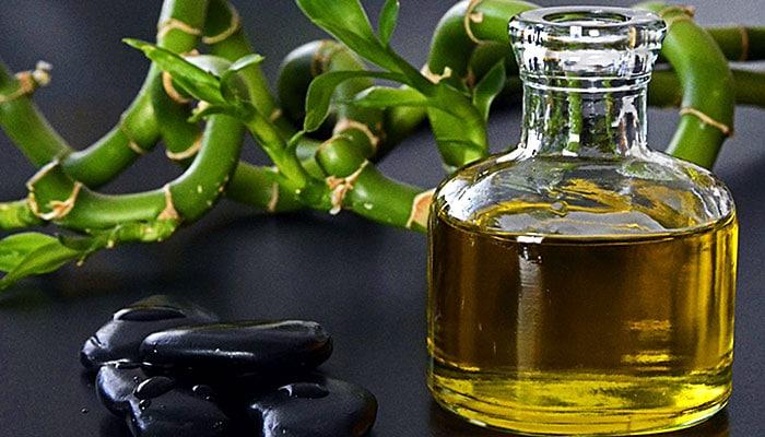 Soda bikarbona i ricinus, nema jače kombinacije: Ekspresni lijek za 24 tegobe!