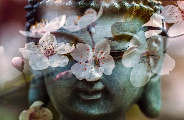 Početak proljeća je idealno vrijeme: Feng shui ritual za čišćenje doma od negativne energije