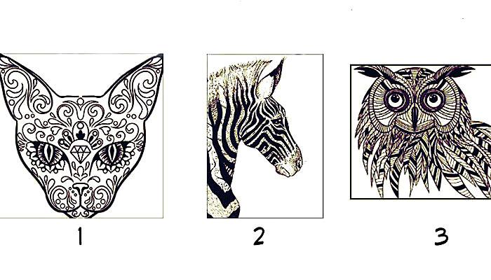 TEST: Oči jedne životinje zovu vašu dušu - Evo koju poruku imaju za vas!