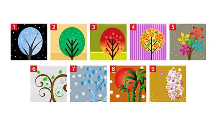 Odaberite jedno drvo - ONO otkriva 2 zanimljivosti o vama!
