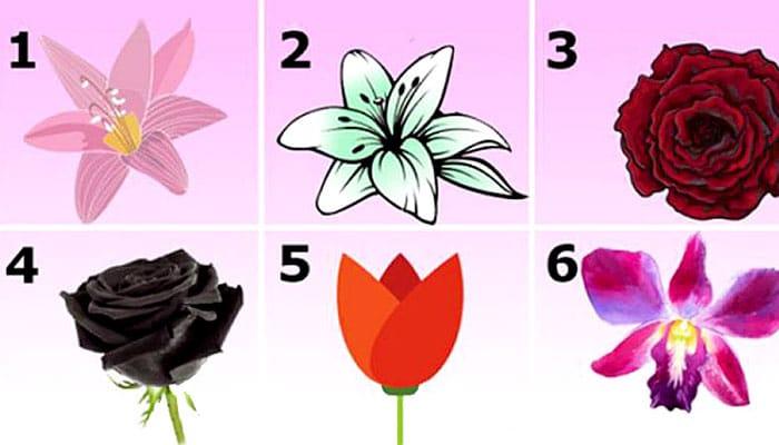 TEST: Odaberite najprivlačniji cvijet - Saznat ćete zapanjujuću tajnu svog karaktera!