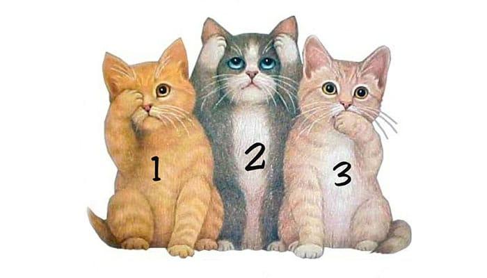 TEST: Izaberite najsimpatičniju macu - Ona će vam otkriti poruku!