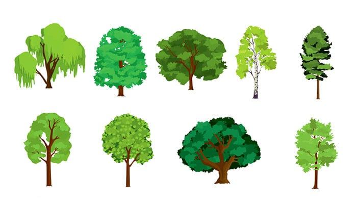 Odaberite jedno stablo i otkrijte što vaš čeka do kraja godine