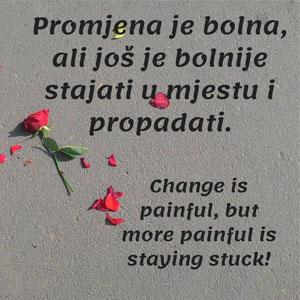 Promjena je bolna ali još je bolnije stajati u mjestu i propadati.