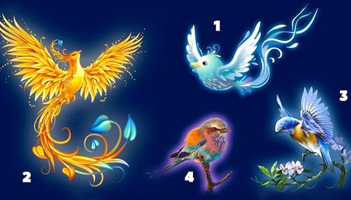 Čarobni test: Odaberite svoju pticu sreće i saznajte kakvo vas ljeto očekuje