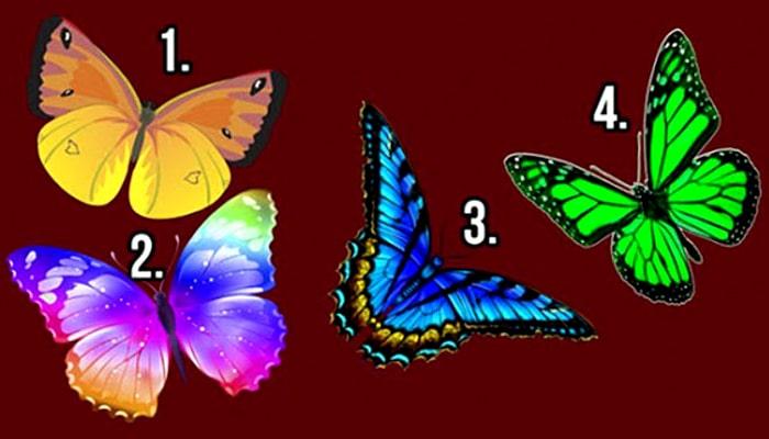 Izaberite leptira i otkrijte tajne svoje duše!