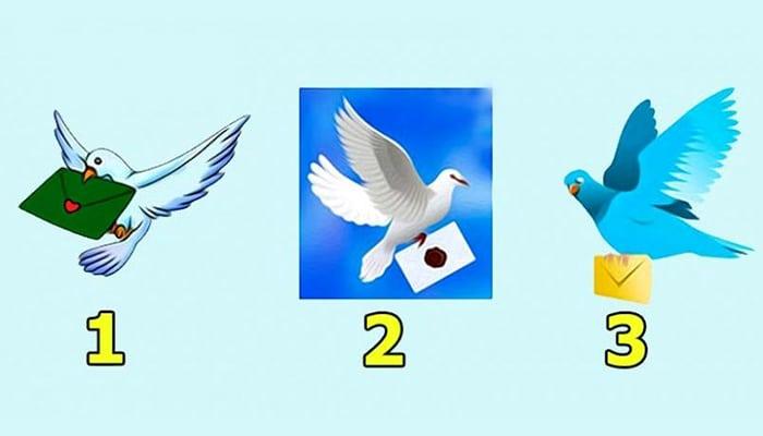 Odaberite jednog goluba i saznajte što će se dogoditi u sljedeća 3 dana!