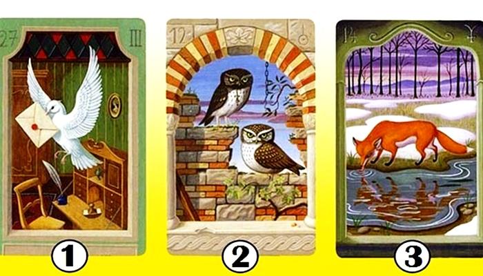 Karta koju odaberete otkrit će vam kako vas drugi vide!