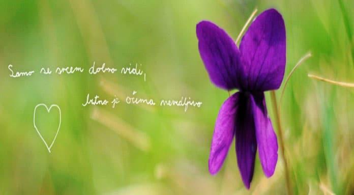 20.-21.09. Rijeka - Udruga Balans: Dani otvorenih vrata