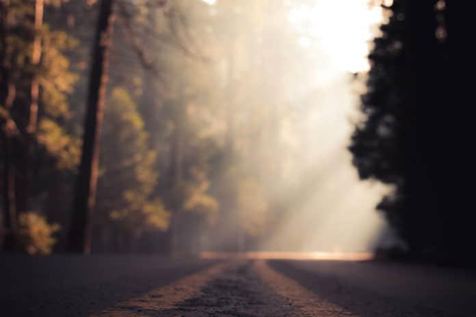 Tumač vaših snova: Stari i poznati put