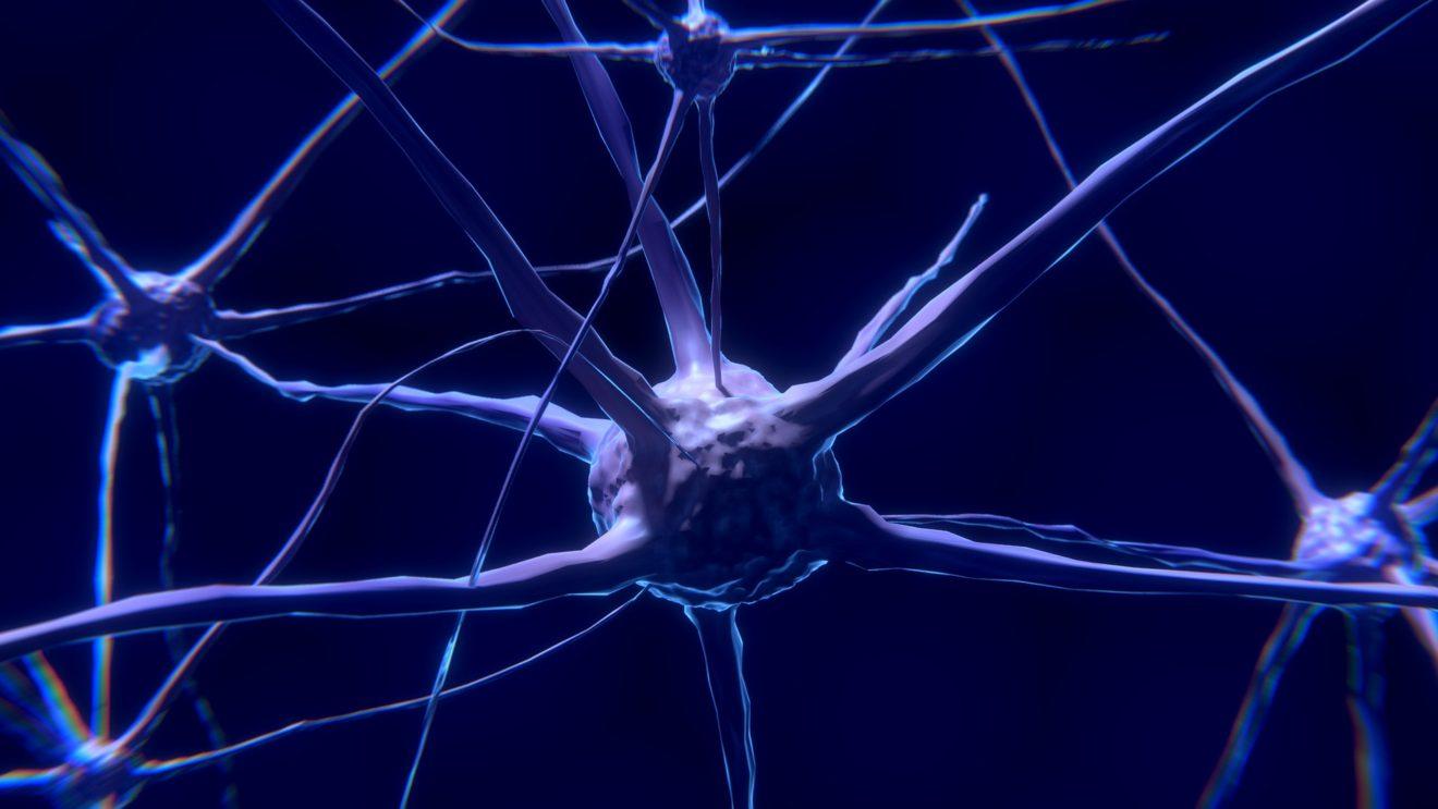 Neuroznanstvenici kažu da je vaša zaboravnost zapravo znak izvanredne inteligencije
