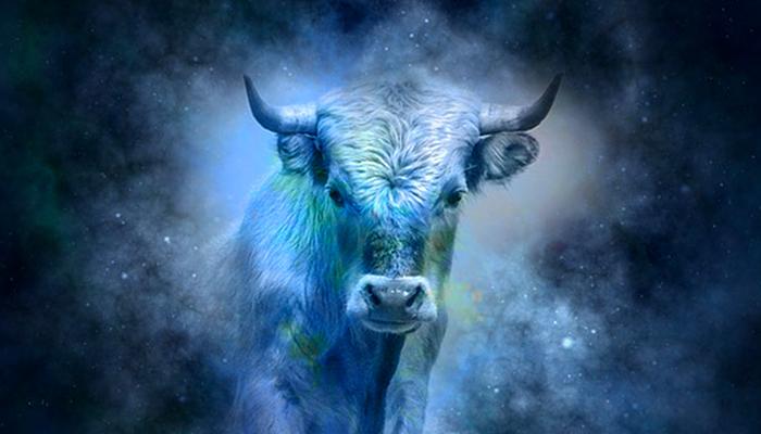 Veliki horoskop za Bika u 2019. - Veliki uspjeh u karijeri, strast u vezi