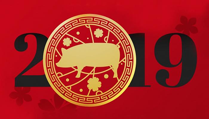 Veliki kineski horoskop po znakovima za 2019. - Evo što vas očekuje u Godini Svinje!