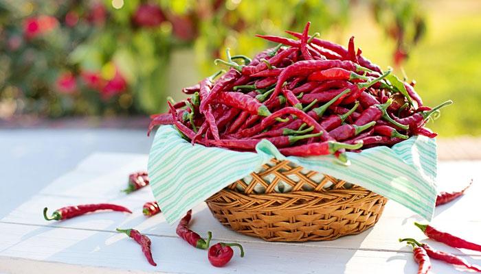 Ljute papričice - što ljuće, to zdravije: U stanju su otjerati najteže bolesti!