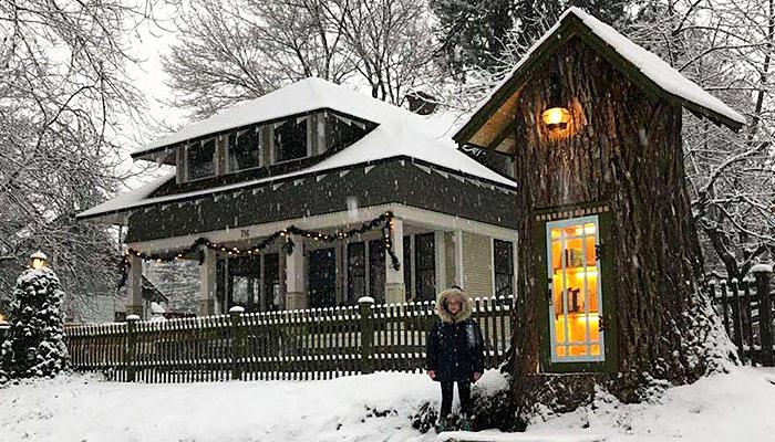Žena preobrazila 110-godišnje mrtvo stablo u besplatnu malu knjižnicu za susjedstvo