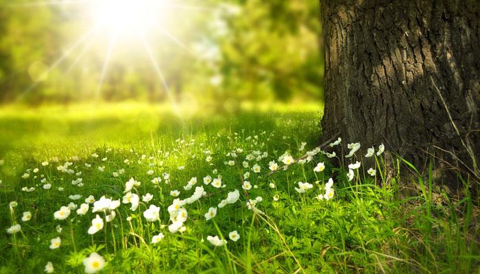Astro prognoze za proljeće: Svibanj će biti najugodniji i pun prilika -