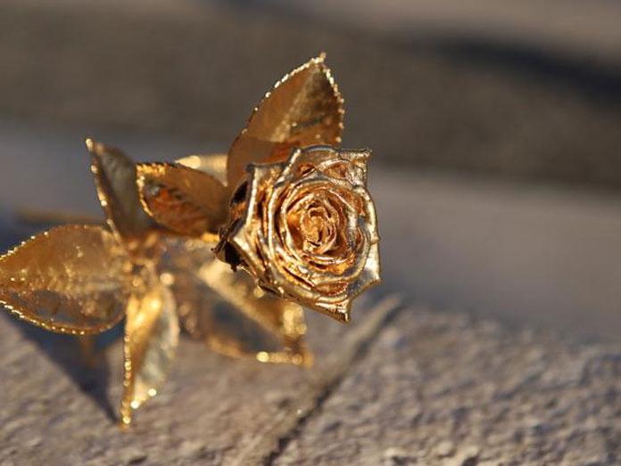 Zlatarnica Rodić ponudila zanimljivu ideju za vrijedan i dugovječan dar - ruže koje nikada neće uvenuti