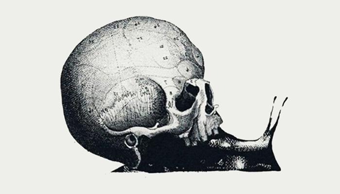 Test osobnosti: Što ste prvo ugledali - puža, kartu ili lubanju?