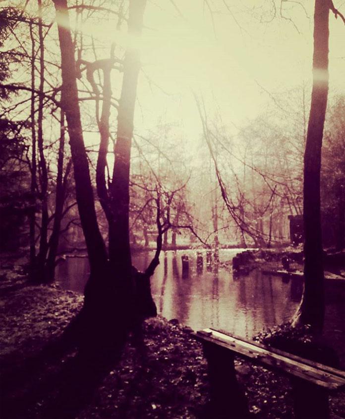 woods tajana cosic
