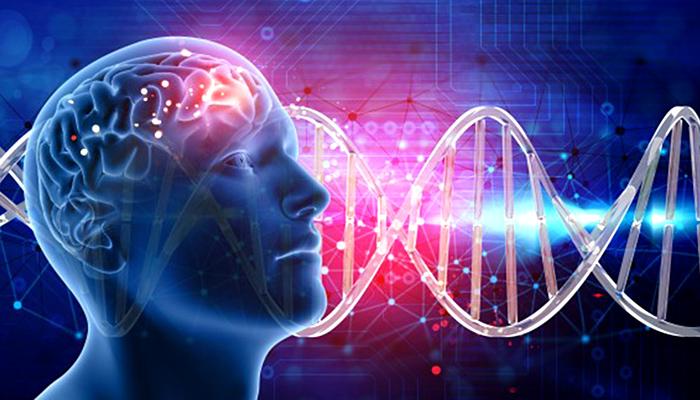 """Neuroznanstvenica upozorava: """"Trebali bi posvetiti puno više pažnje emocijama u pogledu zdravlja!"""""""