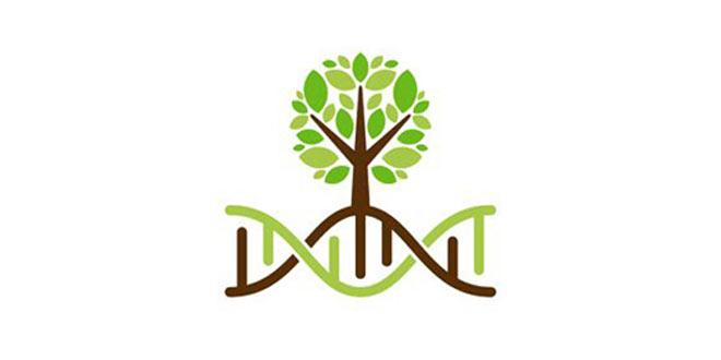 Vježbaonica - Genetsko naslijeđe